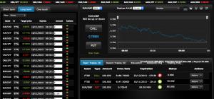 Binary Royal trading platform